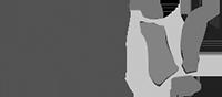 logo_ij